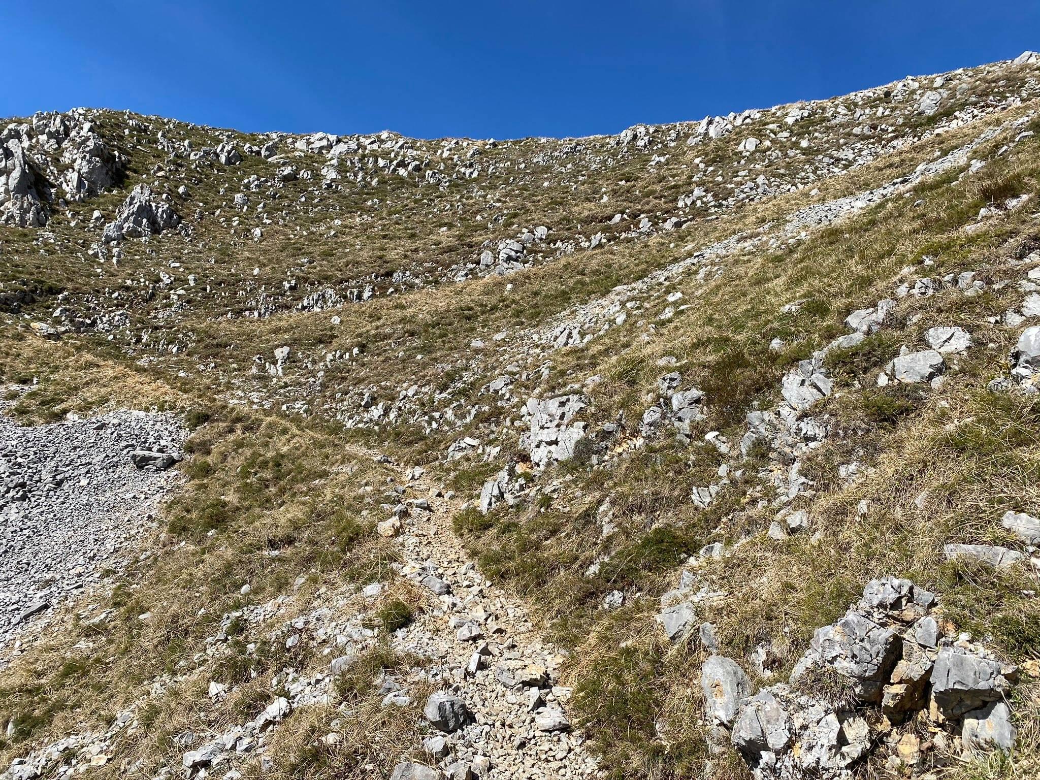 À l'approche du sommet, le sentier est de plus en plus caillouteux.