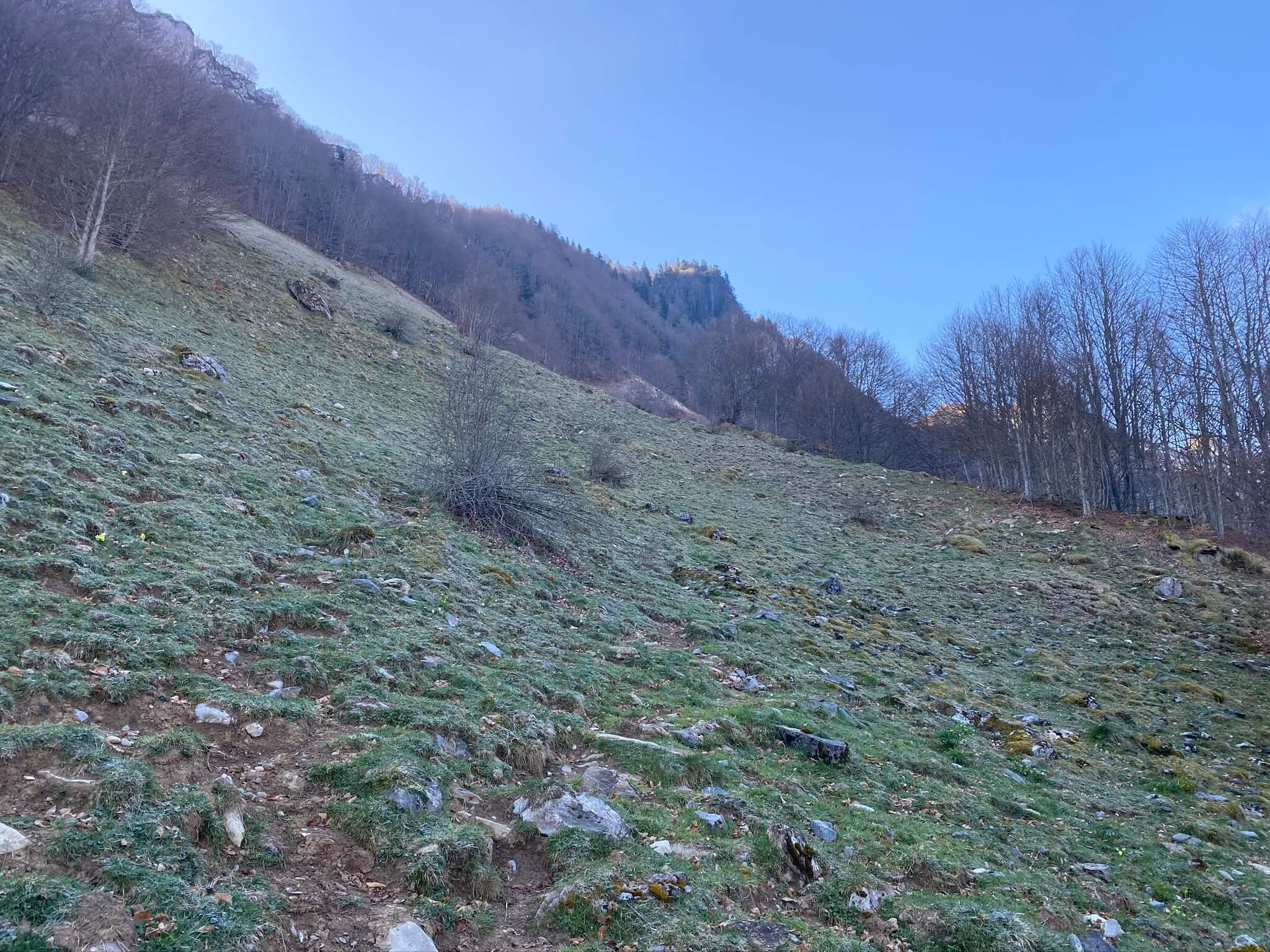 Le sentier longe le bois de Larassiette